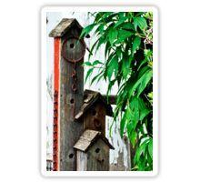 Sticker. Photographic Print. Bird House Triplex Suite By Sandra Foster - Red Bubble. #birdhouse #birdhouseart #sandrafoster