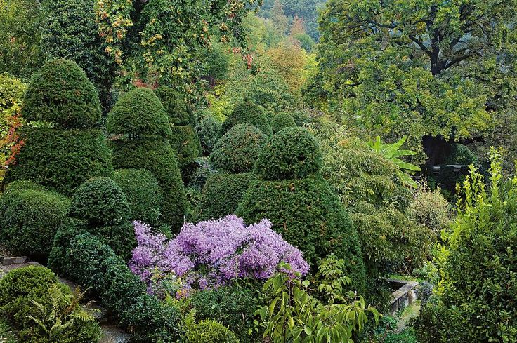 """A chi pensa al giardino come a un hortus conclusus, o perché appare avulso, nella sua controllata struttura e nella sua armonia, dalla realtà della natura, oppure in quanto riservato a un'esigua élite che può permettersene uno privato, risponde l'architetto paesaggista Paolo Pejrone, toccando un tasto tanto dolente quanto attuale nel nostro Paese: «<em>Penso che ci sia una relazione importante tra il """"fare giardini"""" e la tutela del paesaggio. La creazione del paesaggio miniaturizzato de..."""