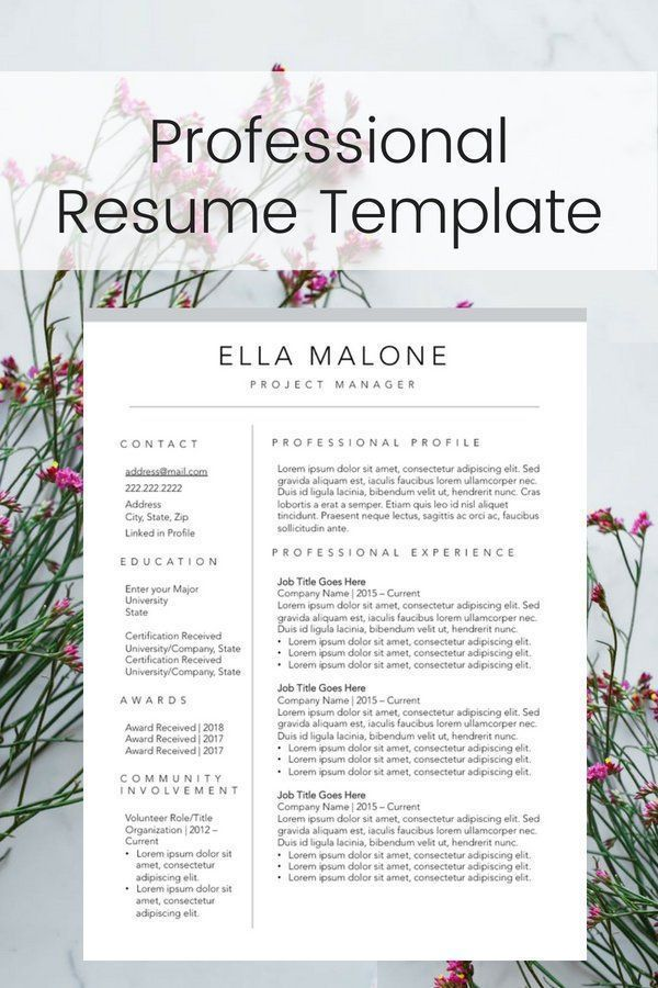 simple entry level resume
