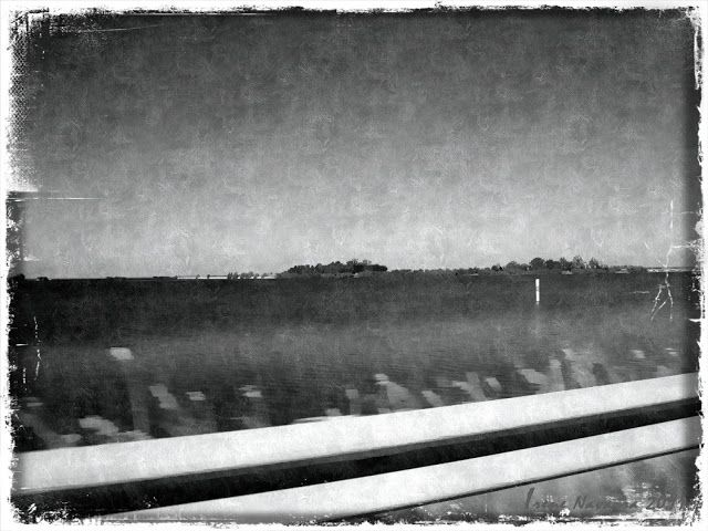 Irene Navarra / Visioni: Haiku / Oltre la strada / Beyond the highroad.