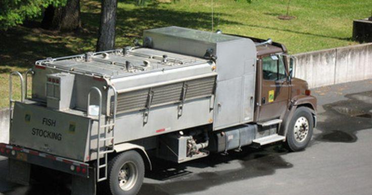 """La historia de los camiones Western Star. Con sede en Oregón, Western Star Trucks Inc. construye las plataformas de tractor-acoplado clase 8. Se lo conoce como """"camión de camionero"""" por su énfasis en el confort y la seguridad del conductor. Se puede trazar sus raíces a la línea de White Trucks, un constructor de vehículos comerciales desde los albores de la industria del transporte. Pasó ..."""