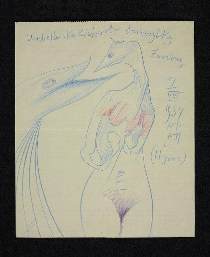 witkacy: 1934 rysunek - Umbella skokietowała dziworybkę Żonżonę