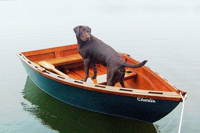 This could be my chocolate lab....Mountain Lakes, Lakes House, Lakes Life, Chocolate Labs, Grrrrrrreat Outdoor, Lakes Girls, Chocolates Labs, Loveliness Labs, House Plans