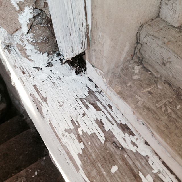 To Identify If Your Home Has Leadpaint You Re Going To Need A Leadpainttest If Lead Based Paint Is Found In 2020 Lead Paint Removal Construction Group Paint Remover