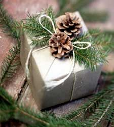Christmas gift wrappingHoliday Gift, Gift Wrapping, Pine Cones, Gift Wraps, Wrapping Ideas, Christmas Wraps, Christmas Wrapping, Christmas Gifts, Wraps Ideas