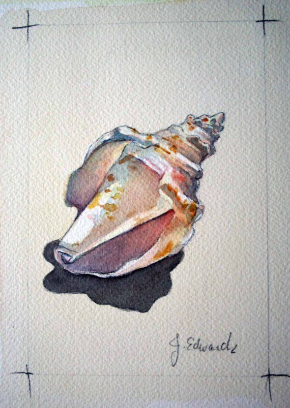Broken Seashell 2 Original Watercolour nightly study by jodyvanB