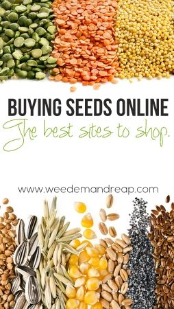 Great list of the best sites to shop for organic, non-GMO seeds.