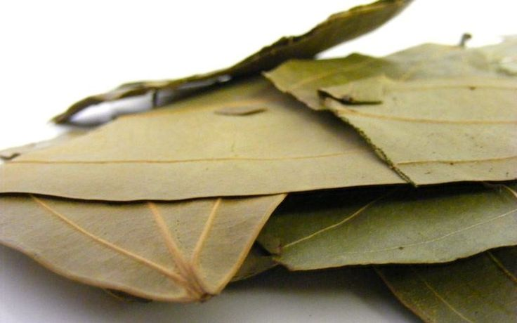 Bay Leaf: An Infusion of Antioxidants - Taming the Sugar Disease - Who would have guessed that so much healing could come from one small dried leaf! But that's bay leaf—infusing your body with antioxidant protection as easily as it infuses flavor into poached fish.  Read more: http://health.tipsdiscover.com/bay-leaf-infusion-antioxidants-taming-sugar-disease/#ixzz2iZs61BSS