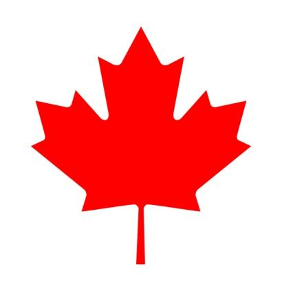 BiZiDEX - BiZiDEX Canada - Online Advertising Services