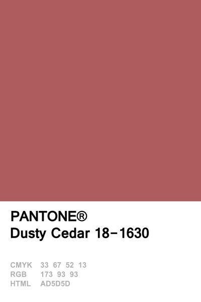 Pantone 2016 Dusty Cedar http://etsy.me/2bQJXRS