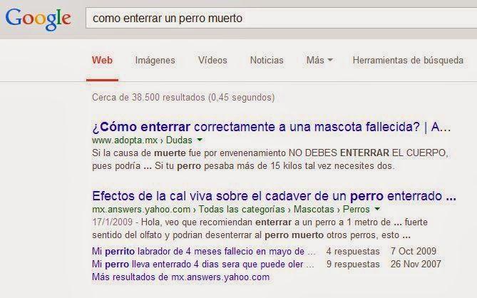 Lo más insólito que busca la gente en Google