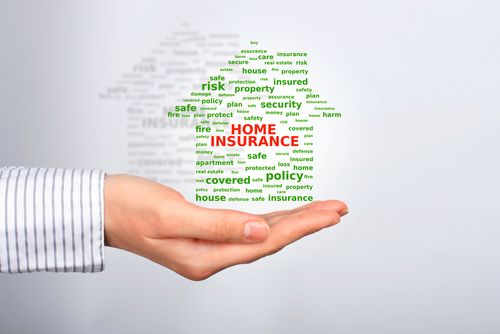For young #homeowners, a comprehensive home #insurance plan can be a financial lifesaver after a major incident. http://goo.gl/Thmrr8