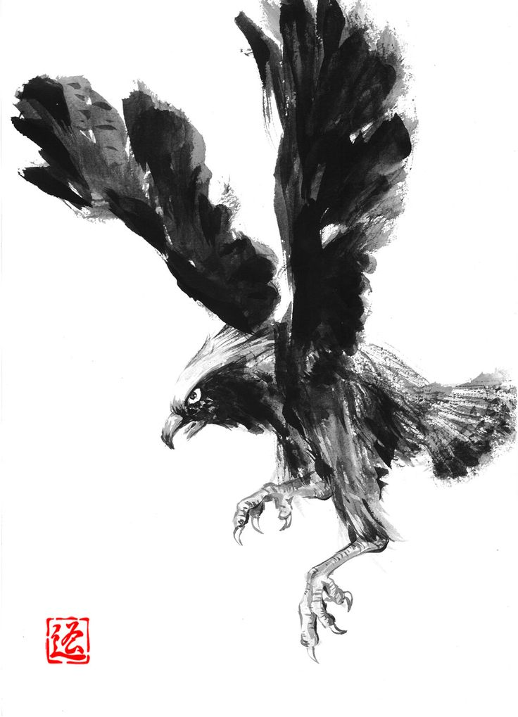 Eagle Chinese Ink And Wash Painting Chinese Ink And