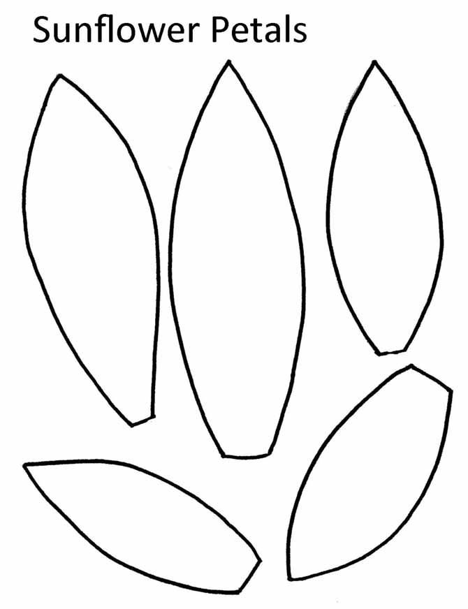 image relating to Free Printable Sunflower Template called Graphic end result for sunflower drawing template Attracts Paper