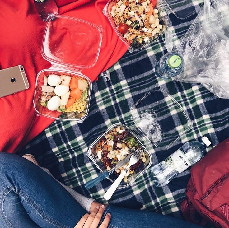 Picnic lunch salad cosy dream outside En Happy tjej Blogg