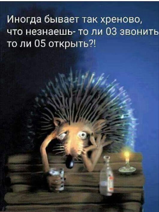 Софья Гранд - Google+