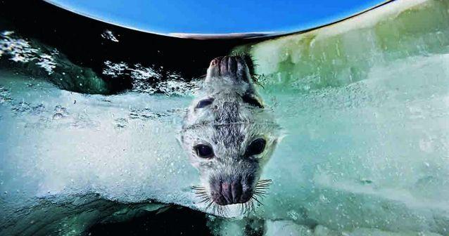 Lamparas Para Baño Turco:Error