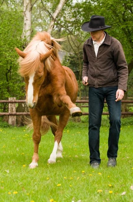 The horse Gaston with Honza Blaha of Czechoslovakia - he is awesome