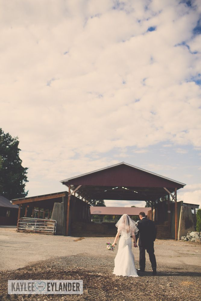 Bride & Groom with Golden retriever | Swans Trail Farm Wedding | Tri ...