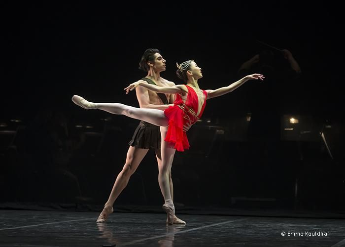 1000 images about dance on pinterest francesca hayward peter wright and ballet choreographer job description