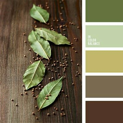 Shades Of Brown And Green