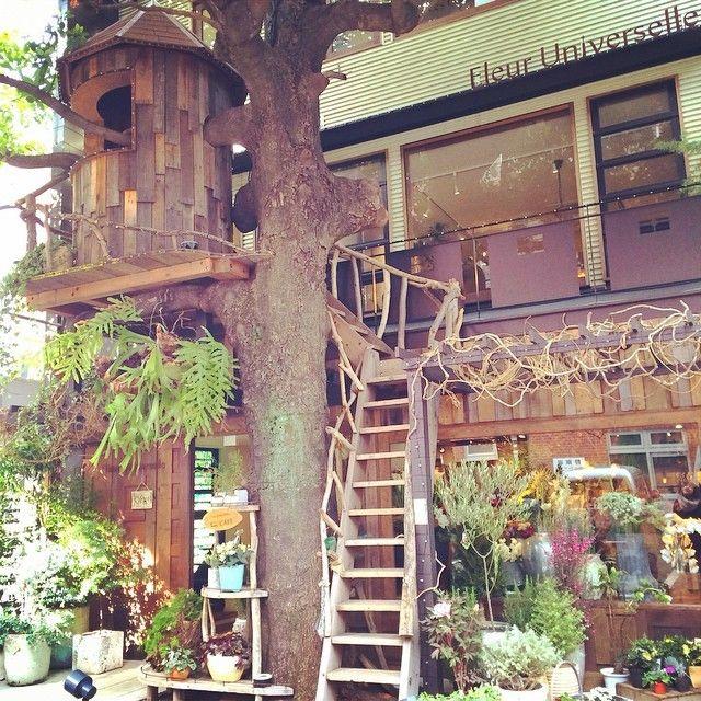 こちらは、緑生い茂るカフェ「レ・グラン・ザルブル」。まるで森の中に迷い込んだかのような錯覚を起こす外観ですが、実は東京のど真ん中・広尾にある、花屋とカフェが併設された人気の癒しスポットなんです。 最近では石原さとみさん・松下奈緒さん共演のドラマ『ディア・シスター』の舞台となったり、辺見えみりさんが訪