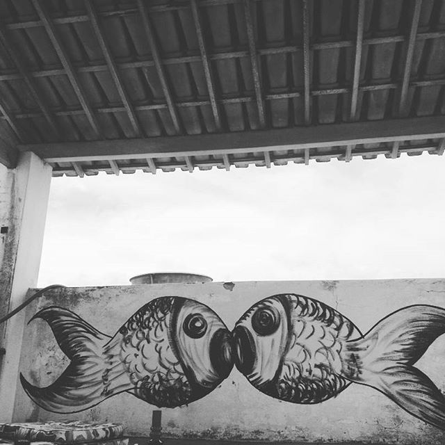 O beijo. #artesergipana #art #arte #aracaju #peixe #draw #desenho #paiting #pintura