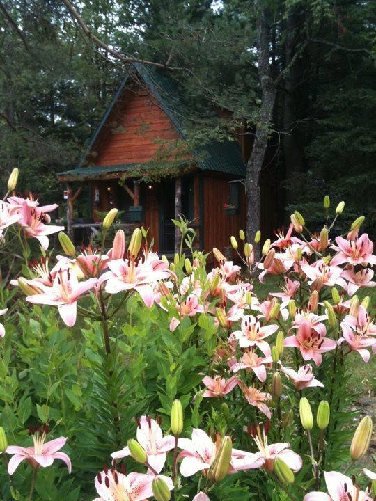 Cozy rental cabin in Forestport, NY, Kayuta Lake Campground