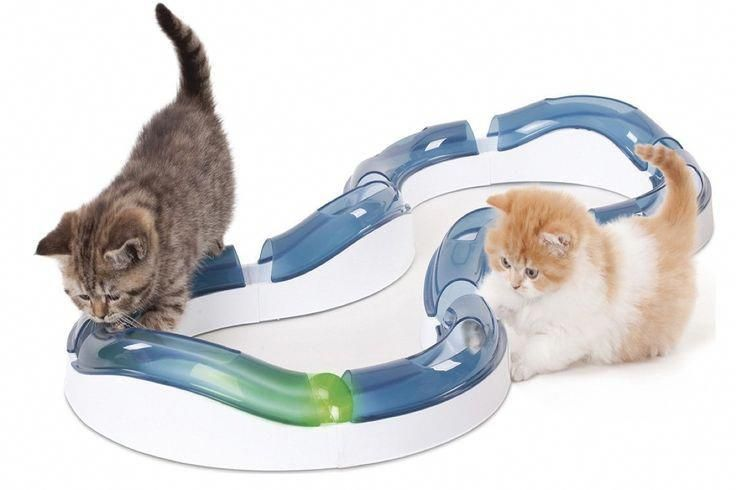 Home Depot Appliances Discount Homeappliancescanada Id 8673883452 Homeappliancesclipart Cat Pet Supplies Cat Toys Pets