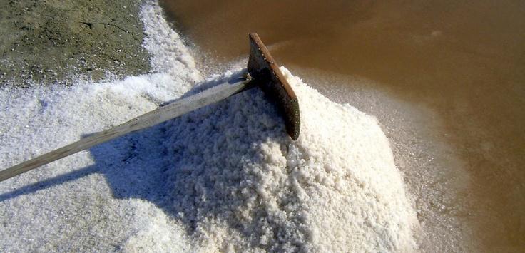 Travail du sel sur l'Île de Ré | Charente-Maritime Tourisme #charentemaritime | #sel