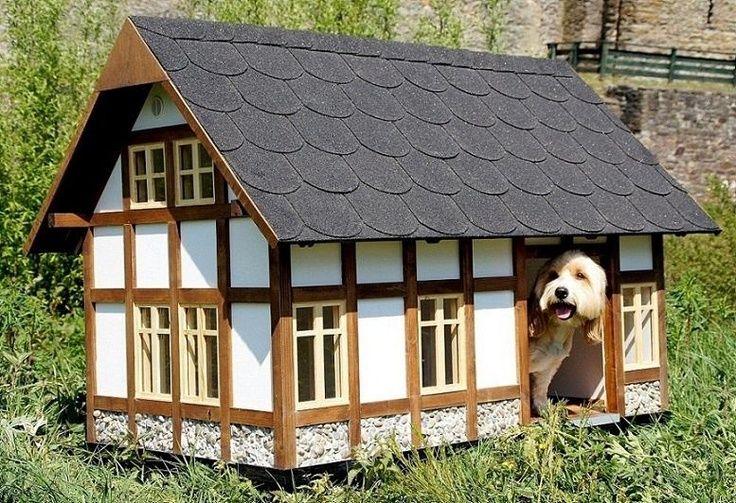 Оригинальные будки для собак: уличные, квартирные и luxury.: radulova