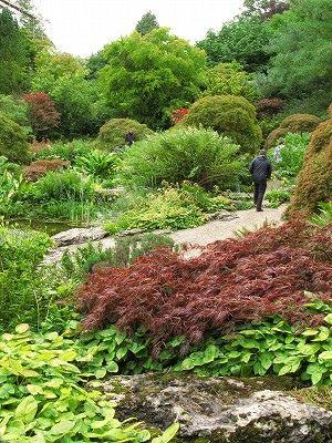 Rock garden,Sizergh Castle & Garden