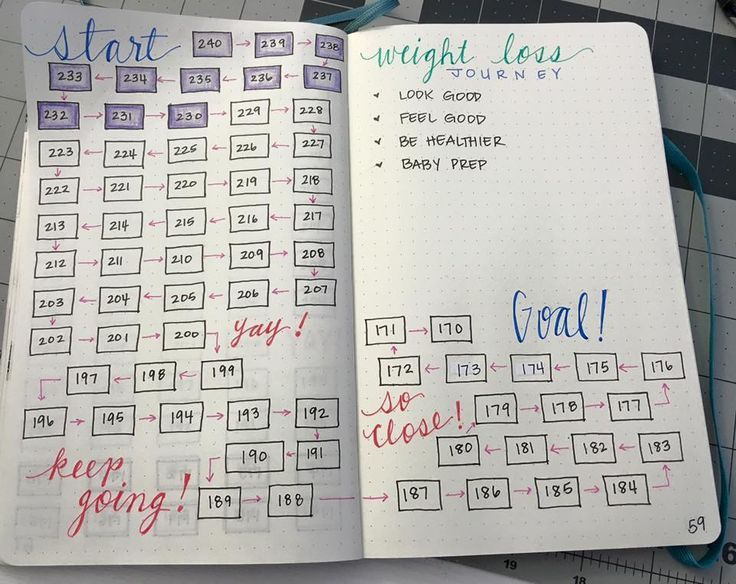 FB * Bullet Journal Junkies weight loss tracker  FITNESS TRACKER