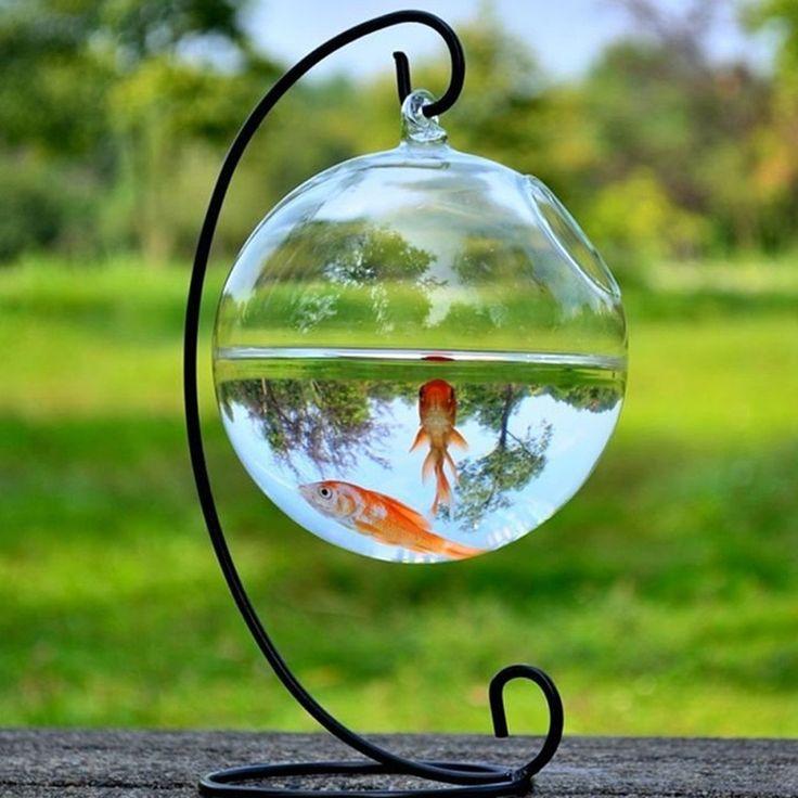Amazon.com: Hanging Glass Vase Fish Tank Transparent Spherical Fishbowl: Home & Kitchen
