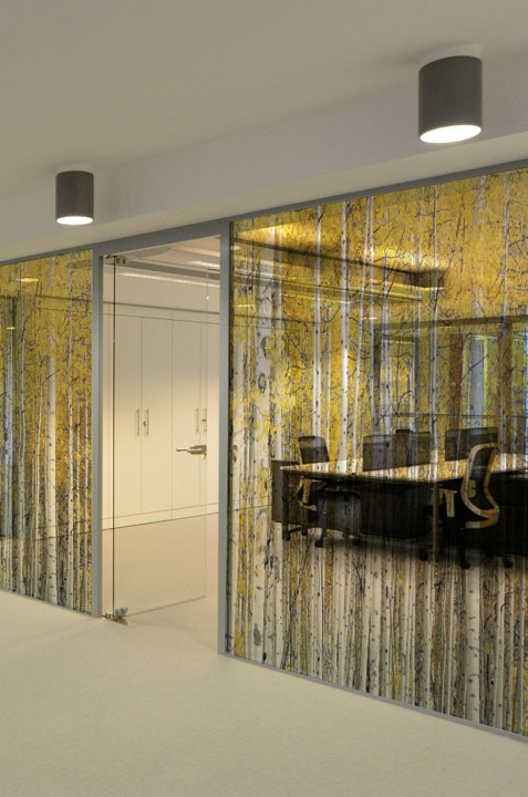 New window film range by Tektura, yellow trees window film