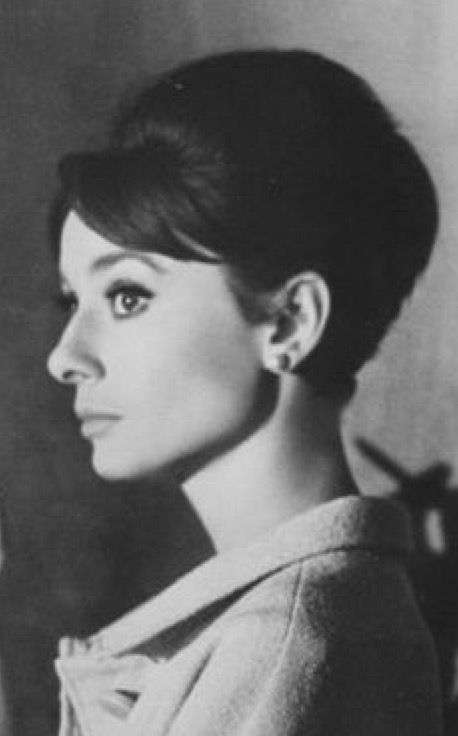 cb6fb9fe7 David P- Future book author-- fine arts on | Black & White Photography |  Pinterest | Audrey Hepburn, Art and Fine Art