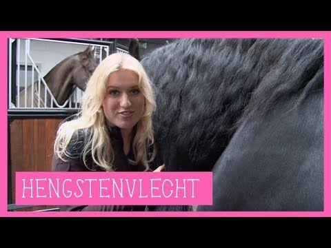 Hengstenvlecht | PaardenpraatTV - YouTube