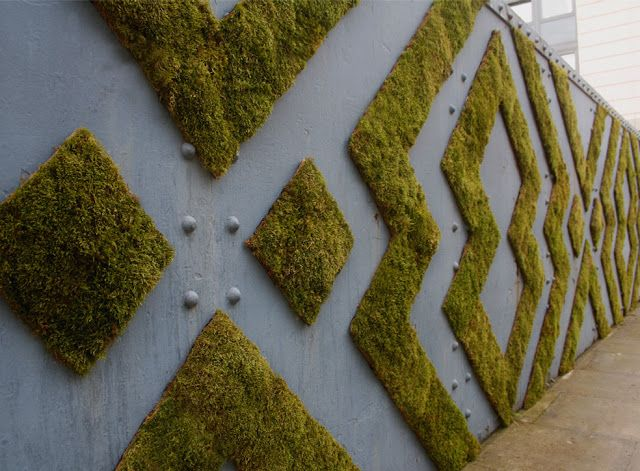 Graffitis Natures - Anna Garforth -