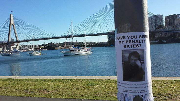 Spotted at Glebe foreshore