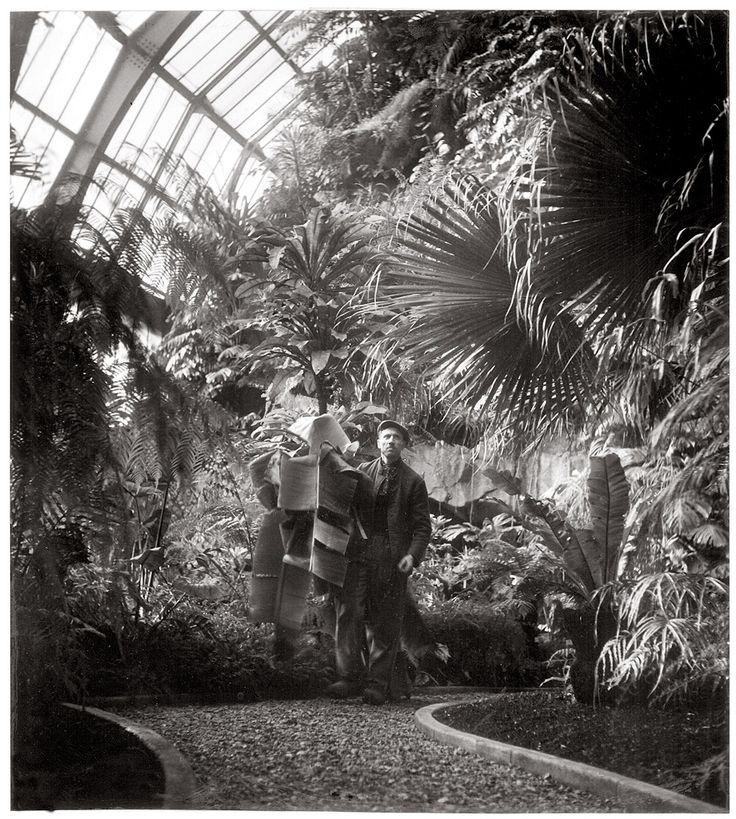 Robert Doisneau a réalisé deux reportages au Muséum national d'Histoire naturelle. Le premier dans les années 1942 – 1943 et le second en 1990. Plus d'une centaine d'images tirées de ces reportages, majoritairement conservées dans le fonds Doisneau de la bibliothèque du Muséum, sont dévoilées pour la première fois au public dans une exposition présentée à la grande galerie de l'évolution jusqu'au 18 janvier 2016. A cette occasion un catalogue est édité aux éditions Flammarion.