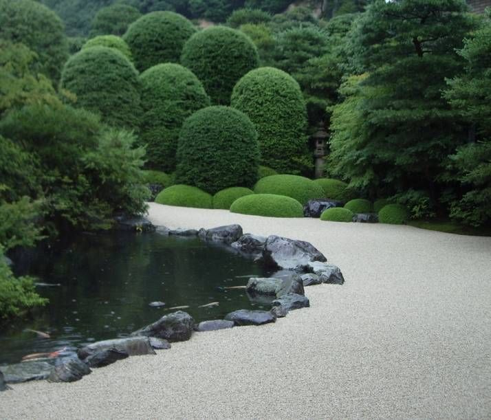 Japanese garden path with conifers