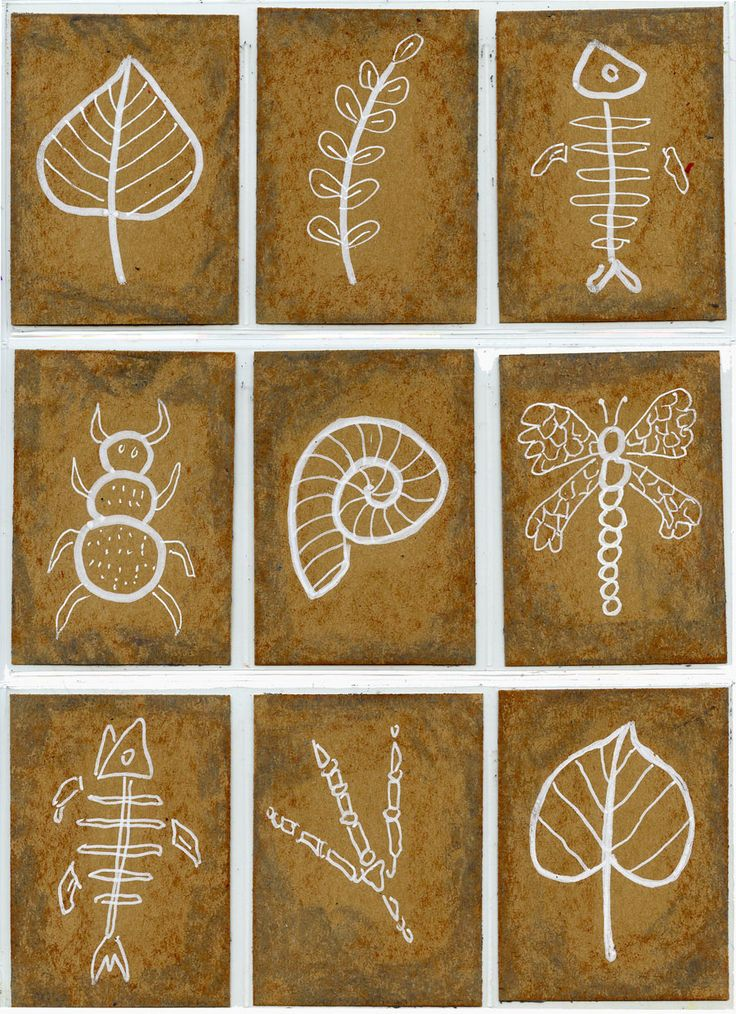 Fossil Art Trading Cards. Tape off the sections of the canvas. This will leave white lines after painting. Use resist method drawing diriectly on the canvas with a white crayon. Have a variety of pictures available. Once complete use a sea sponge and have the students sponge paint over using 3 different shades of brown.