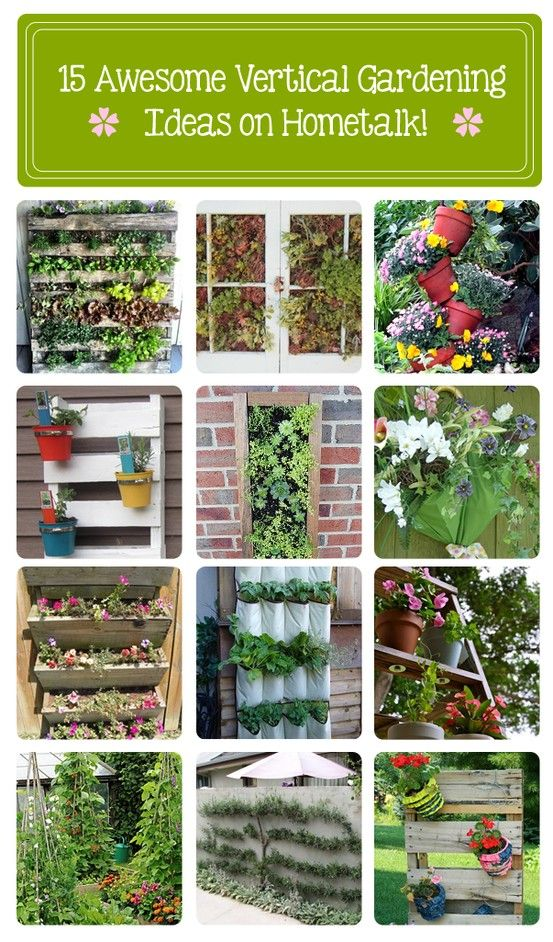 Vertical Gardening Idea Box by The Hometalk