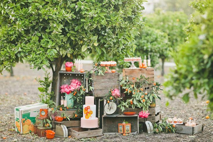 Orange grove inspired wedding
