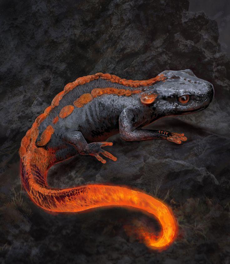 https://www.artstation.com/artwork/salamander2 ...