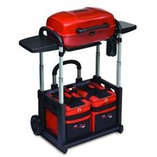 Char-Broil Grill 2 Go