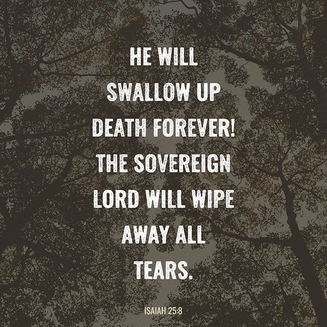 He will swallow up death forever! The Sovereign LORD will wipe away all tears. He will remove forever all insults and mockery against his land and people. The LORD has spoken! ‭‭Isaiah‬ ‭25:8‬‬