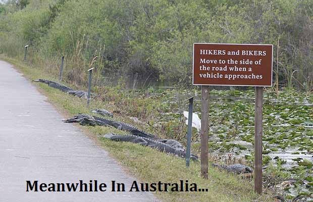 #lol Meanwhile, in Australia.... :) danger lurks for the unsuspecting