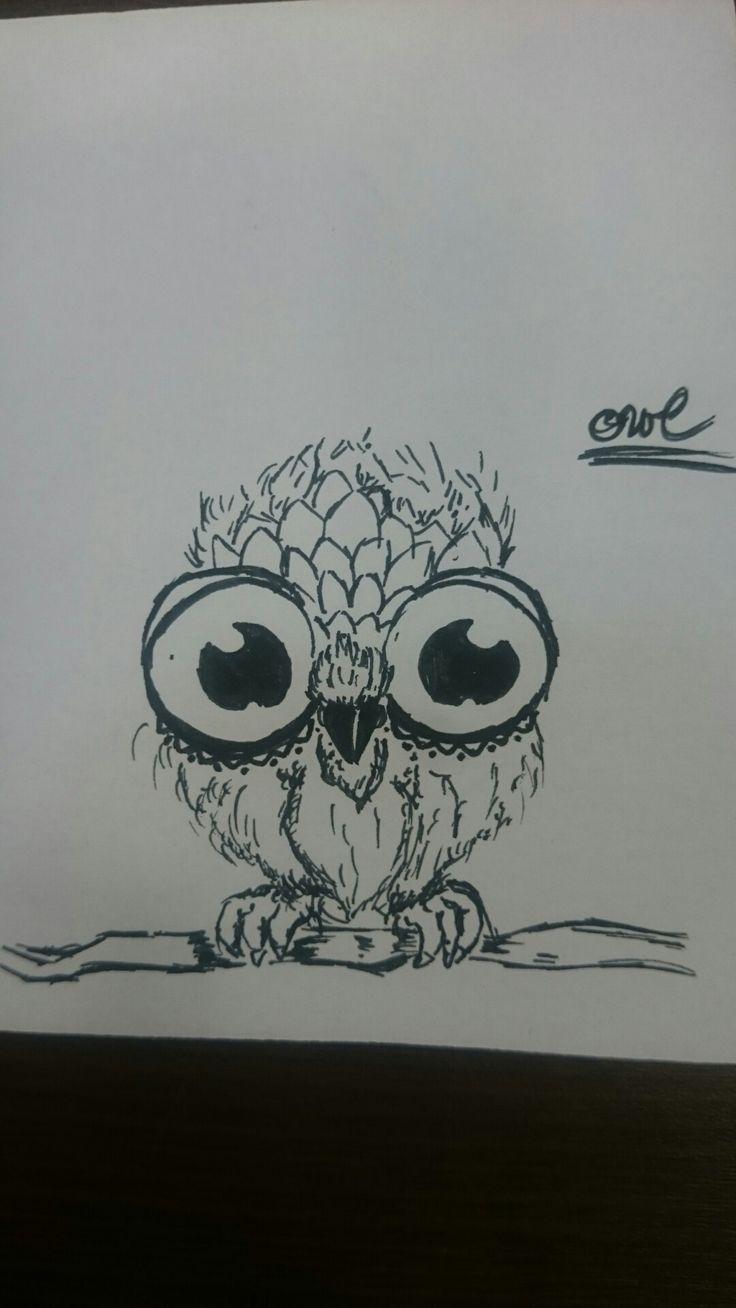 Draw cute owl