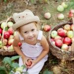 Fall Apple Picking - Your Complete Guide to the Best Places to Pick Apples with the Kids in the Chicago Area. | #OakleesGuide